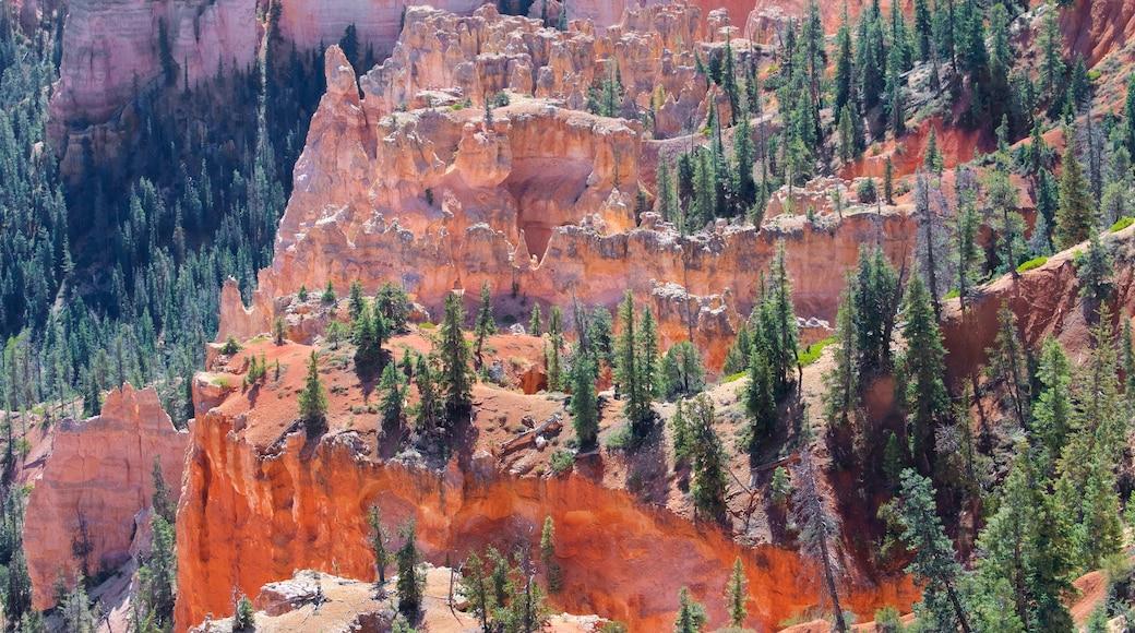 布萊斯峽谷國家公園 其中包括 寧靜風景, 沙漠風景 和 峽谷