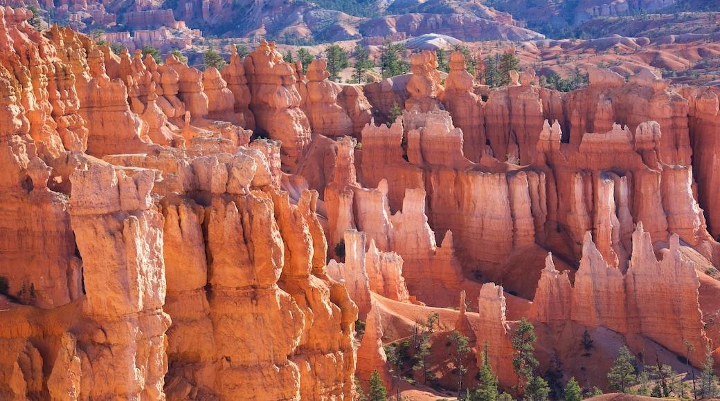 布萊斯峽谷國家公園 设有 沙漠風景, 峽谷 和 寧靜風景