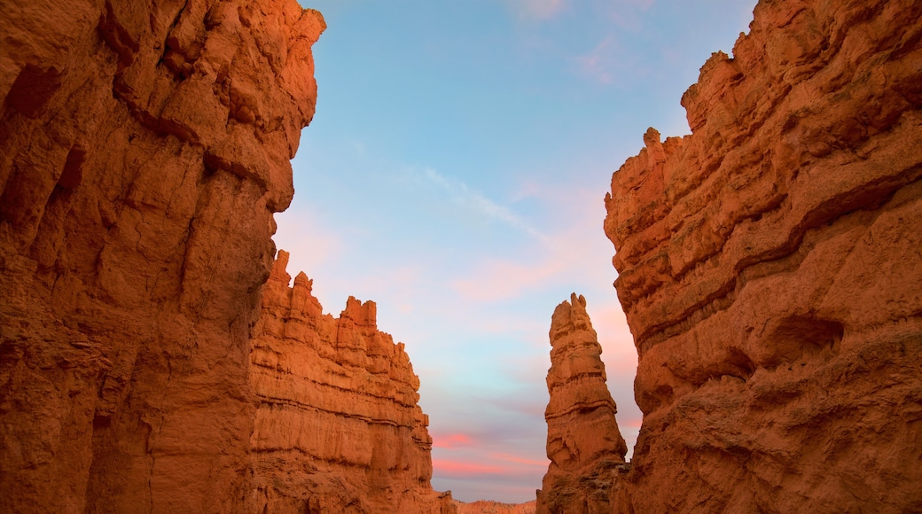Bryce Canyon National Park showing a sunset, desert views and a gorge or canyon