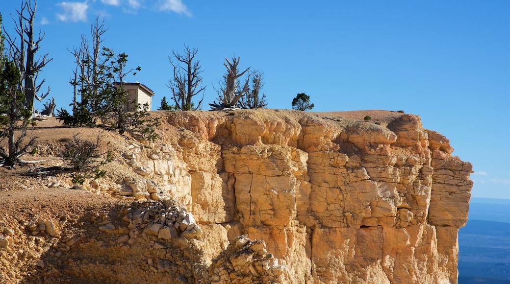 布萊斯峽谷國家公園 其中包括 峽谷, 沙漠風景 和 寧靜風景