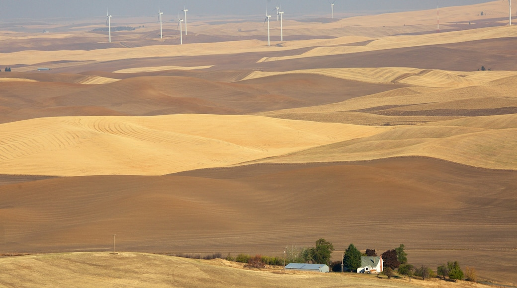 Pullman featuring rauhalliset maisemat ja maatila