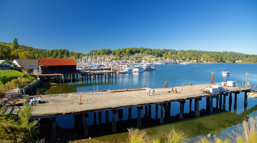 Gig Harbor featuring forest scenes, a bay or harbor and a marina