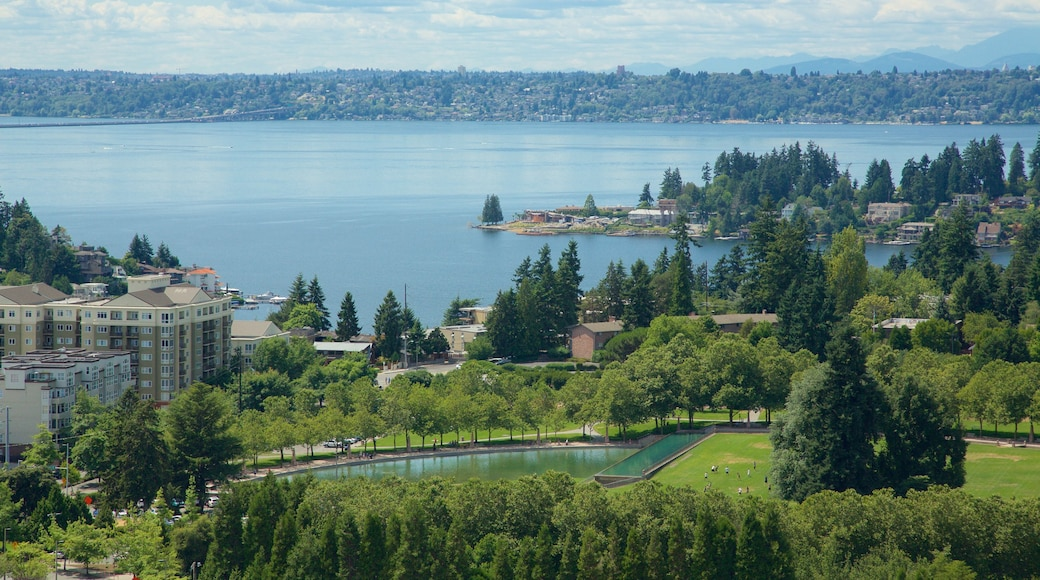 Bellevue featuring a park and a lake or waterhole