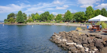 Kirkland featuring a park and a lake or waterhole