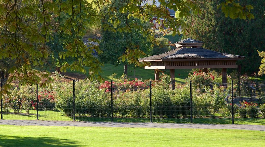 Point Defiance Park showing a park