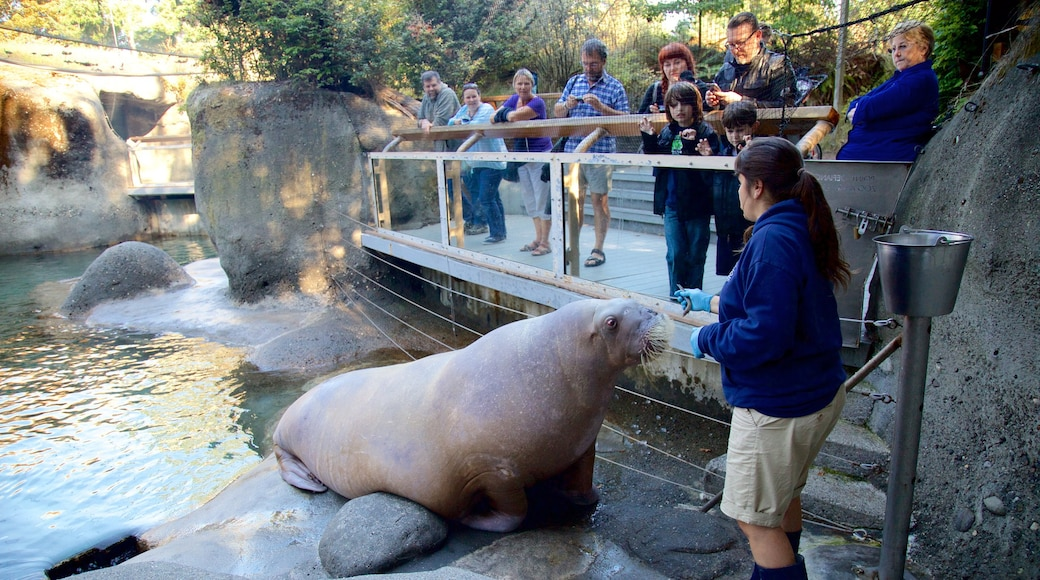 Point Defiance Zoo and Aquarium featuring zoo animals and marine life as well as a small group of people