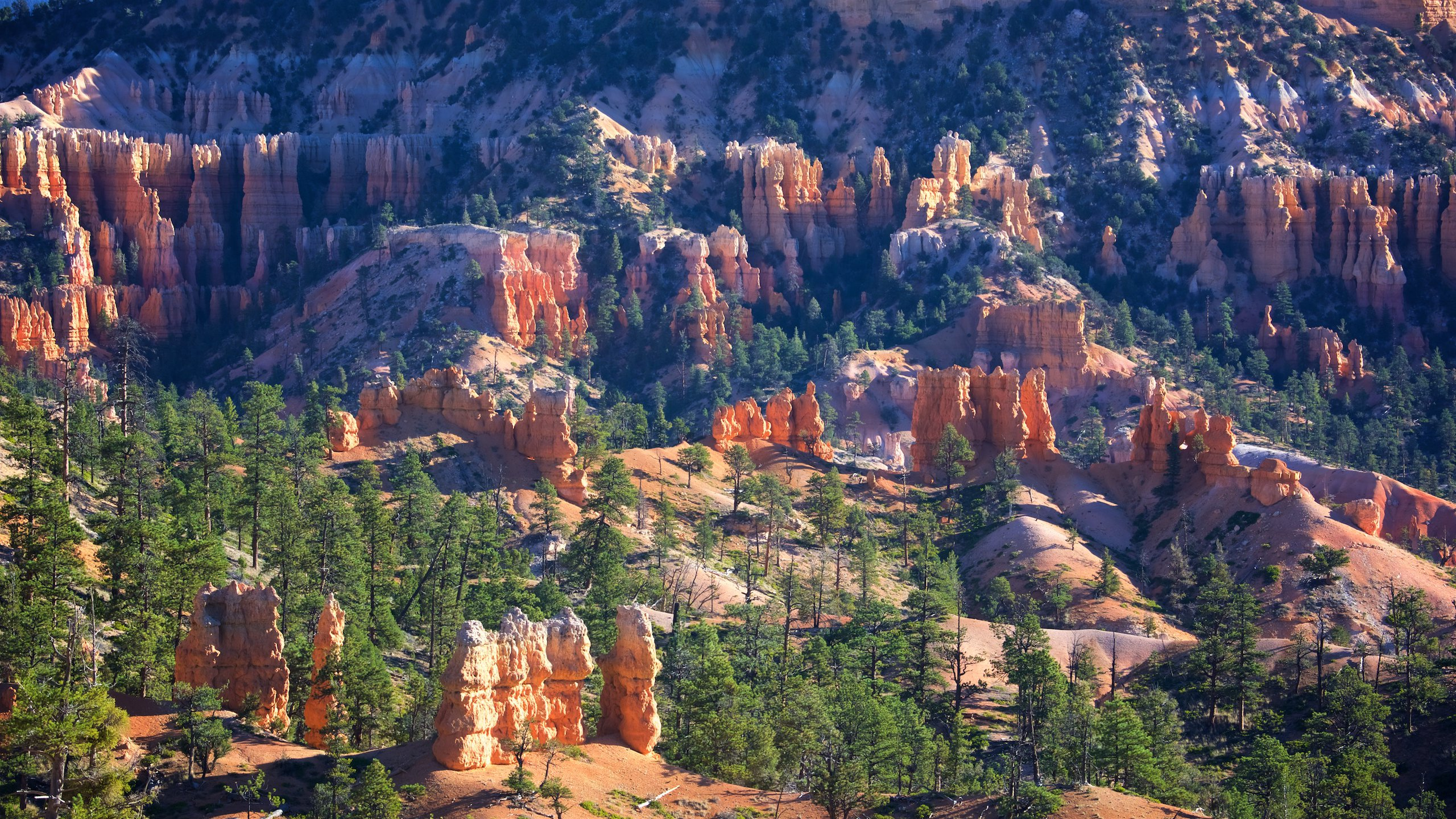 Embark on the Queens Garden Trail or watch the sun rising over Boat Mesa and the Sinking Ship from this favorite destination in Bryce Canyon.