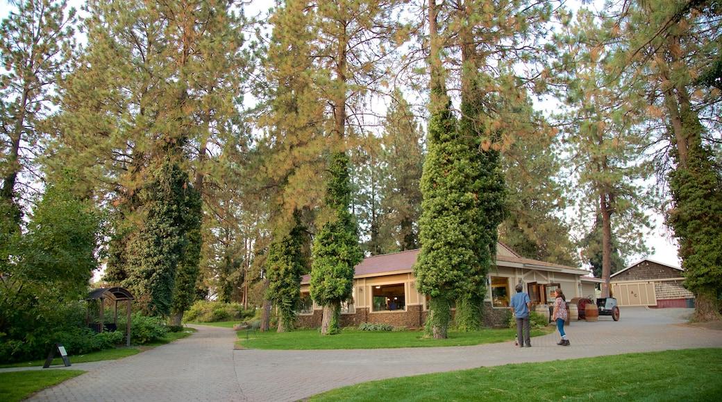 Arbor Crest Wine Cellars featuring puutarha