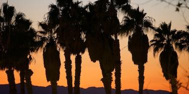 Ventura showing a sunset