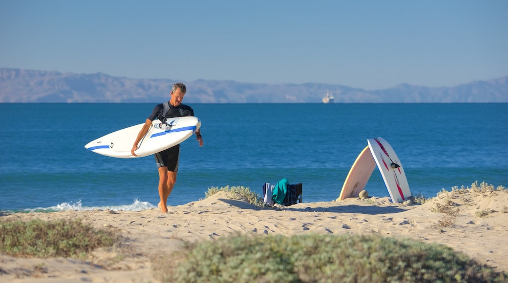 Ventura featuring general coastal views and surfing as well as an individual male