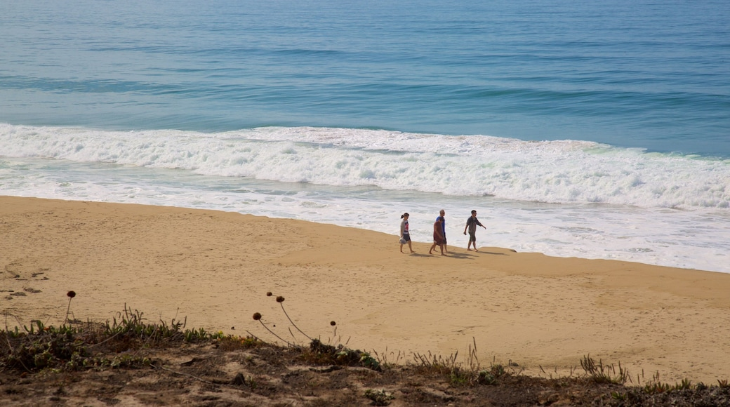 Half Moon Bay showing a beach as well as a small group of people