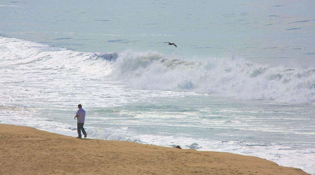 Half Moon Bay mit einem Sandstrand sowie einzelner Mann