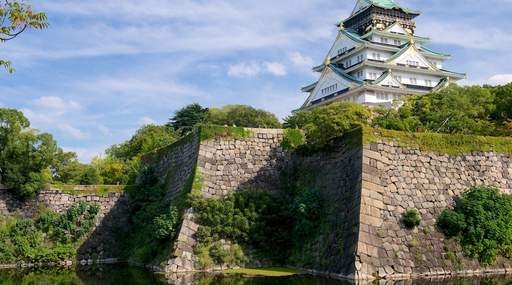 Osaka Castle showing a castle