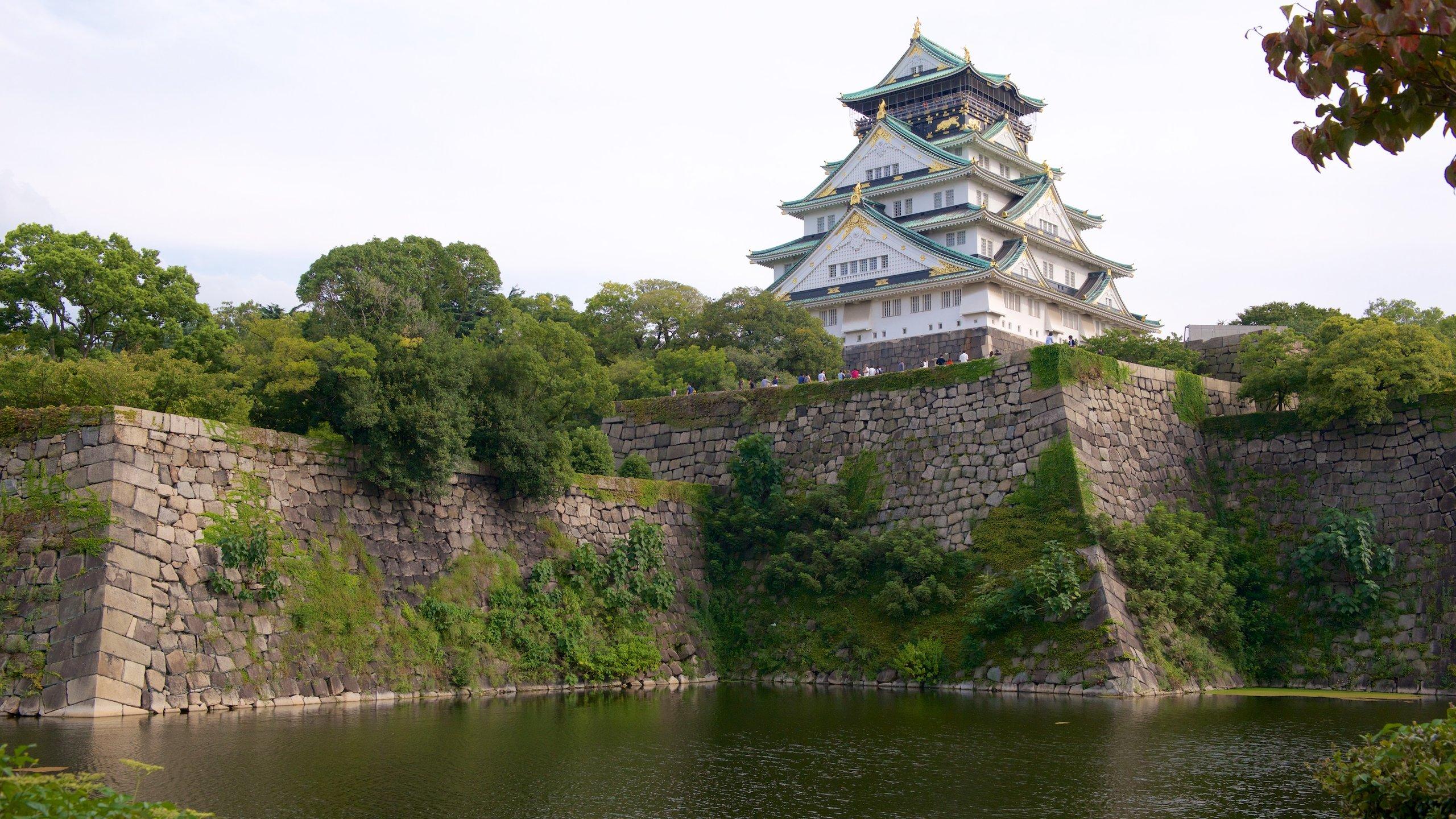 Vous plongerez dans la généreuse histoire du Japon en visitant ce site historique du XVIe siècle, là où des champs de bataille spectaculaires ont laissé place à un parc paisible parsemé de cerisiers.