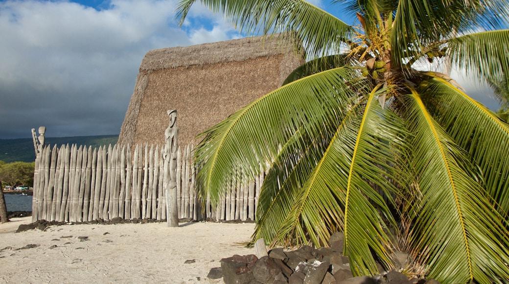 Holualoa showing a house