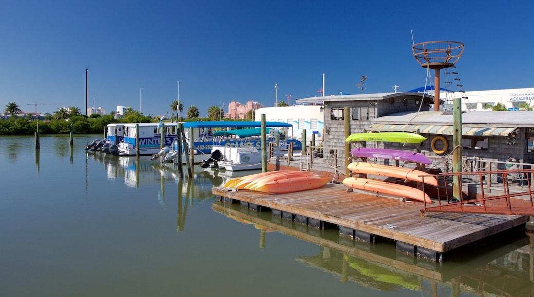 Clearwater Marine Aquarium featuring a marina