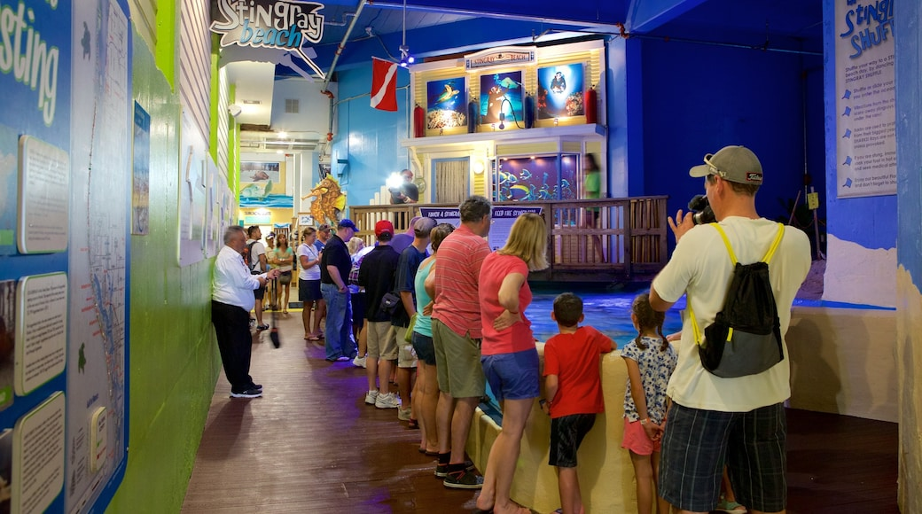 Clearwater Marine Aquarium which includes marine life as well as a large group of people