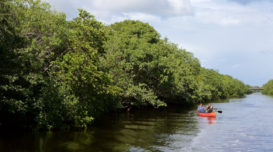 Everglades National Park featuring kayaking or canoeing and a river or creek as well as a couple