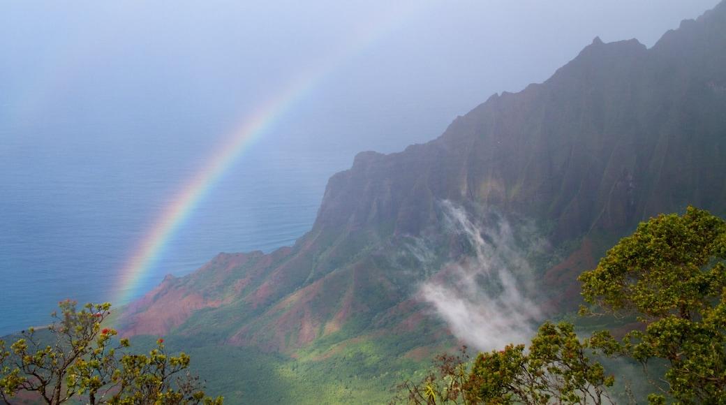 Kauai Island which includes general coastal views and a gorge or canyon