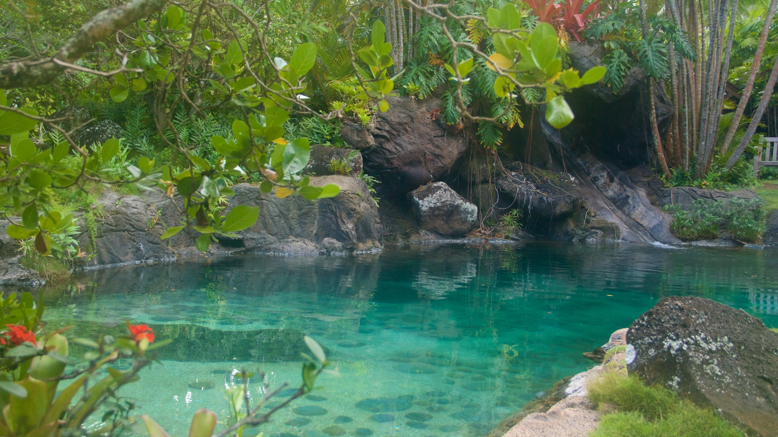 Kilauea, Hawaii, United States of America