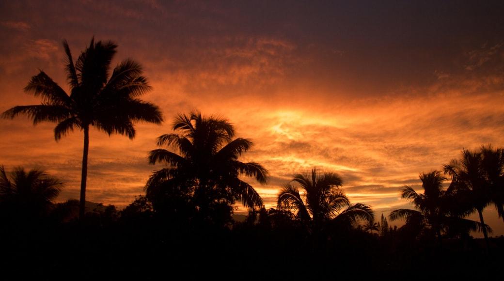 Princeville showing a sunset