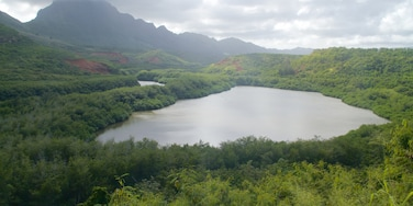 Lihue featuring a lake or waterhole, mountains and forests
