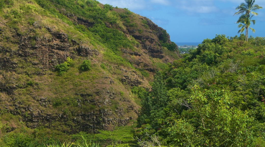 Kapaa which includes a gorge or canyon