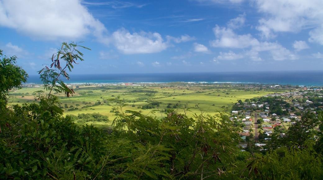 Sleeping Giant Trailhead which includes general coastal views
