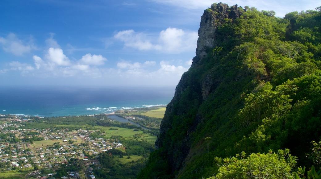 Kapaa showing a gorge or canyon and general coastal views