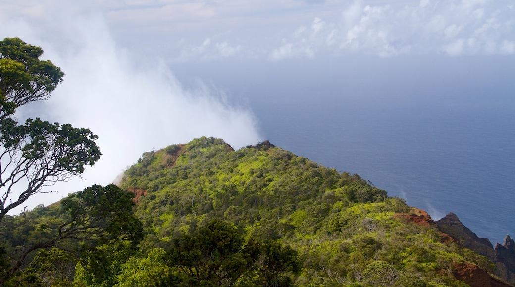 Waimea which includes a gorge or canyon