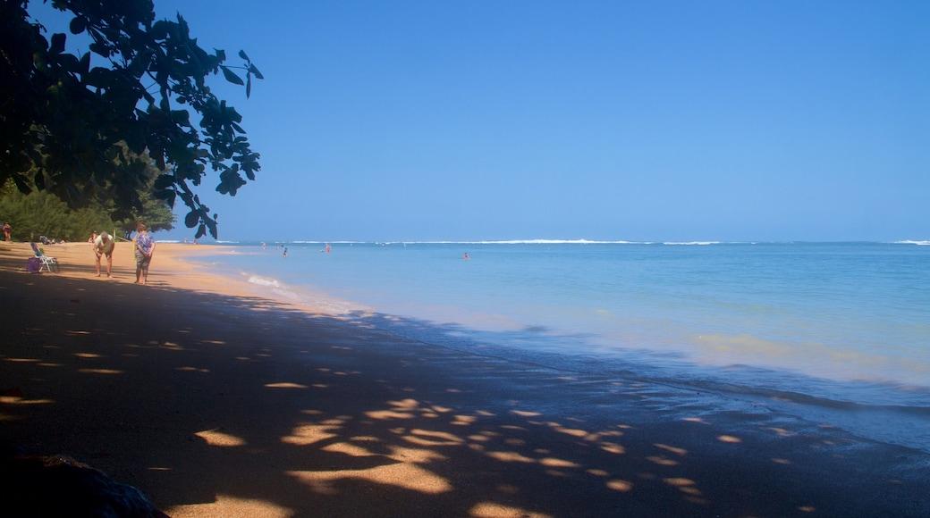 Anini Beach featuring a sandy beach
