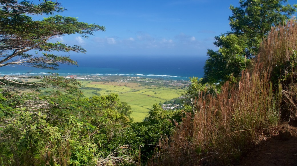 Sleeping Giant Trailhead showing general coastal views