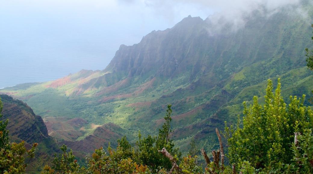 Pu\'u O Kila Lookout featuring landscape views and a gorge or canyon