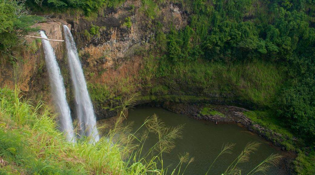 Wailua Falls featuring a waterfall