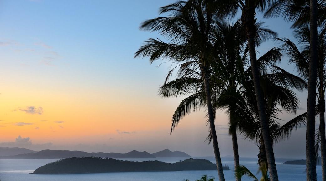 Hamilton Island featuring general coastal views and a sunset