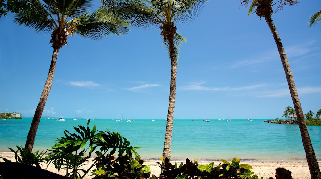 Airlie Beach which includes a sandy beach, landscape views and tropical scenes