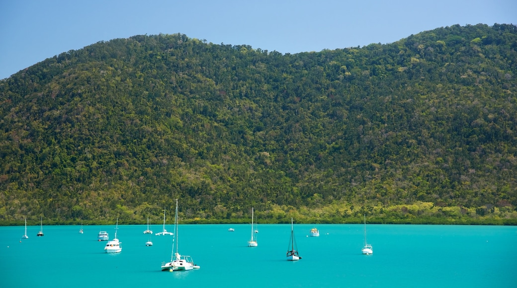 Shute Harbour featuring sailing, general coastal views and landscape views