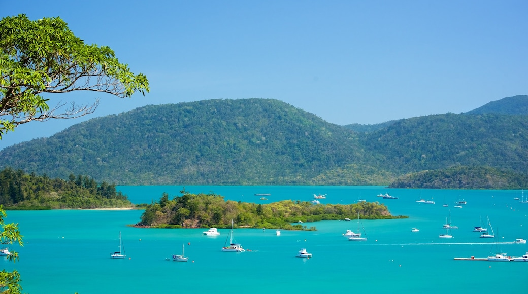 Shute Harbour featuring boating and general coastal views