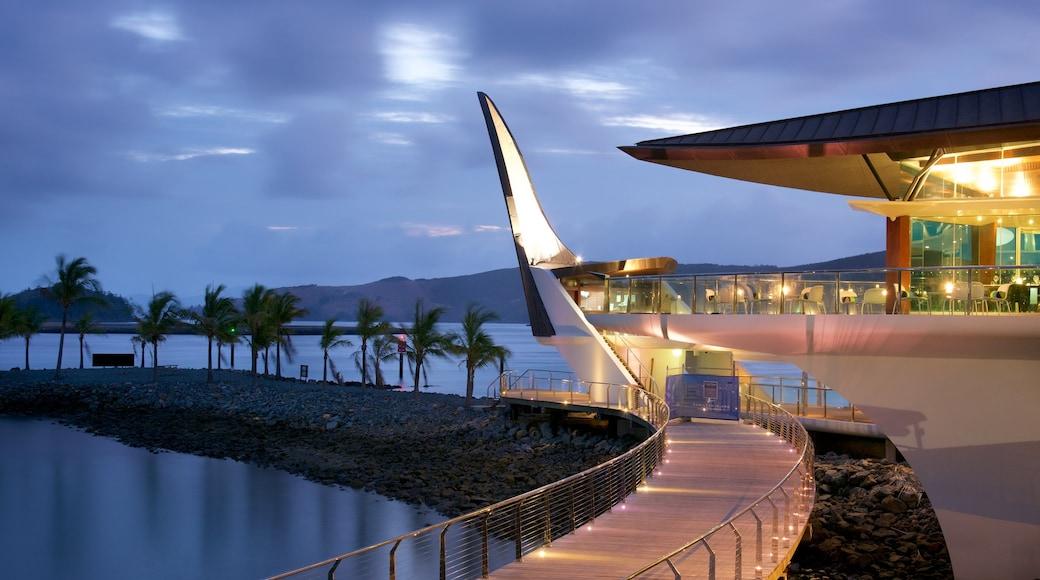 Hamilton Island showing general coastal views and night scenes