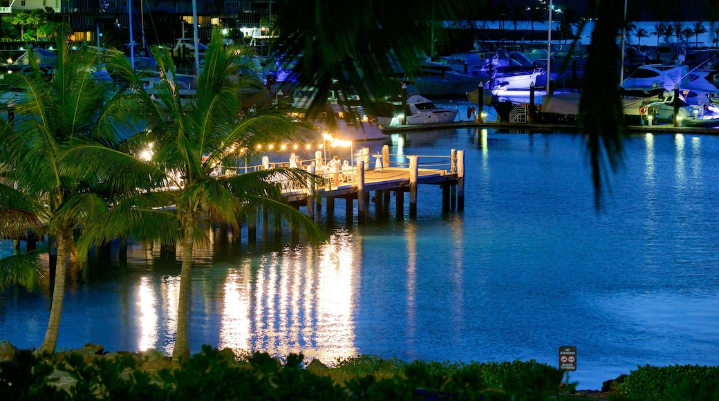 Hamilton Island featuring night scenes, dining out and outdoor eating