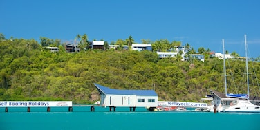 Shute Harbour featuring general coastal views, signage and tropical scenes