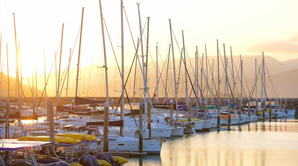Abell Point Marina which includes a sunset, a bay or harbour and sailing