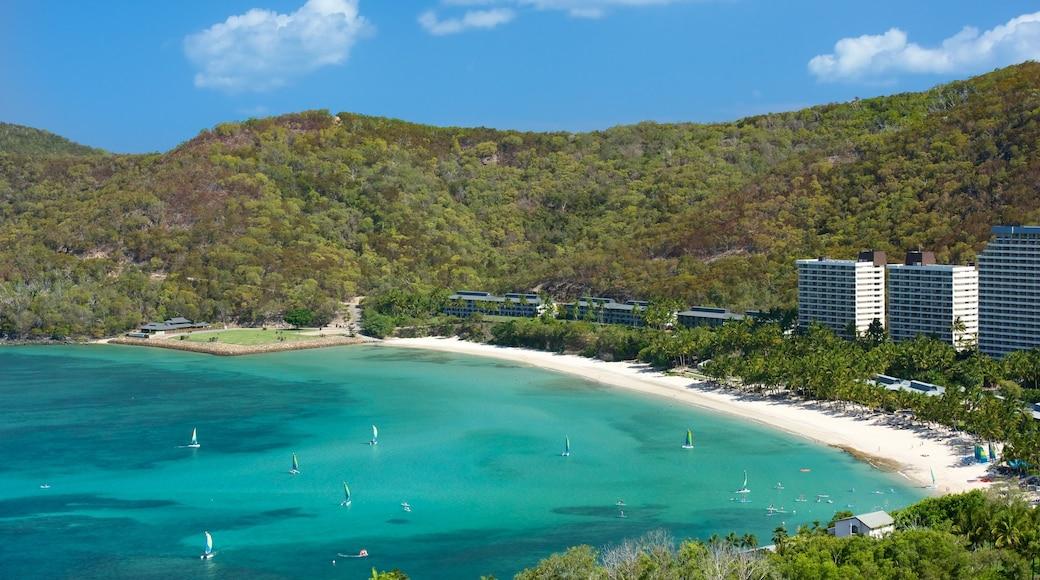 Catseye Beach featuring general coastal views and a coastal town
