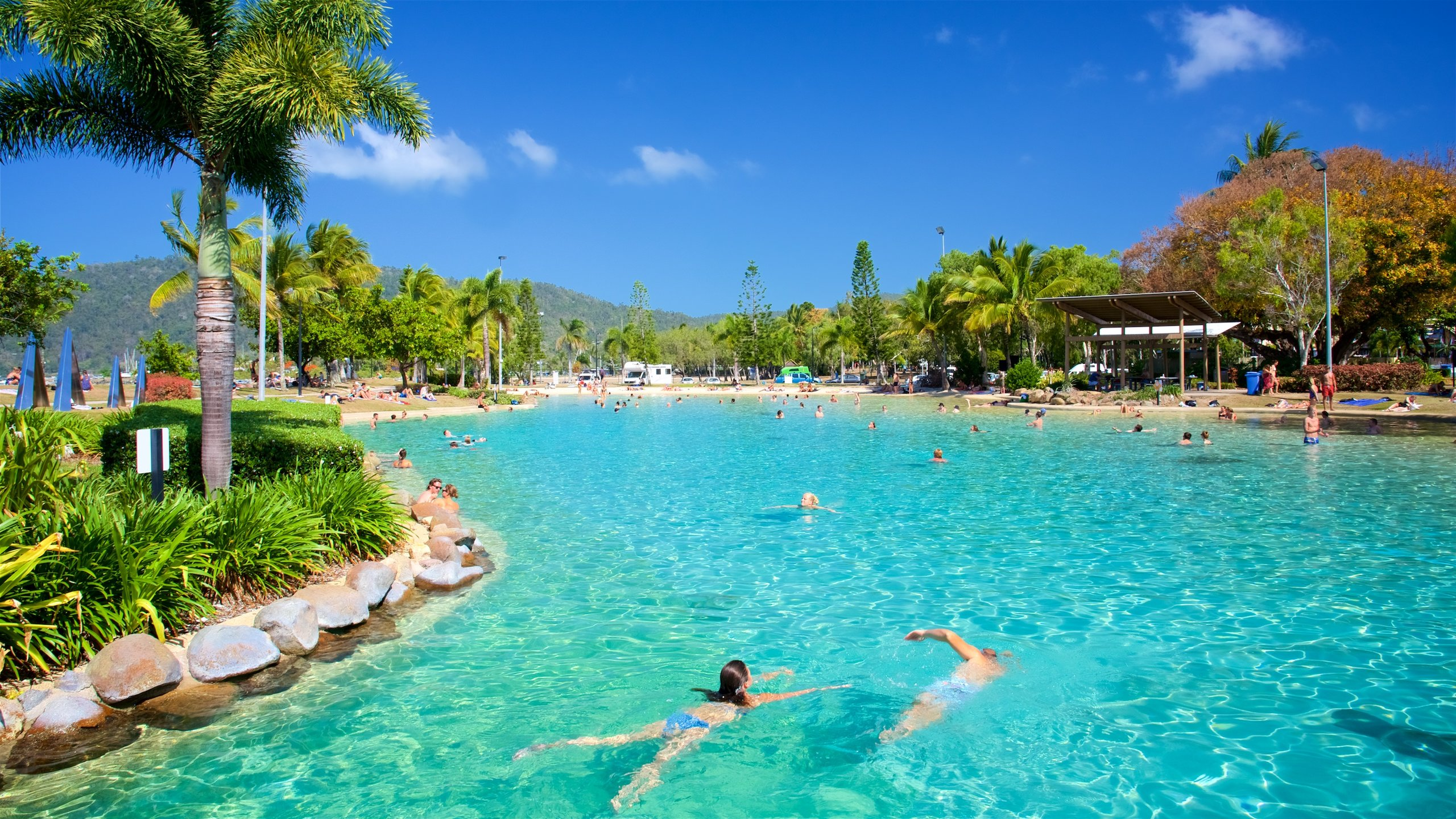 Spend the day with the family enjoying the sheltered waters of Airlie Beach's own tropical oasis, surrounded by landscaped gardens and grassy picnic areas.