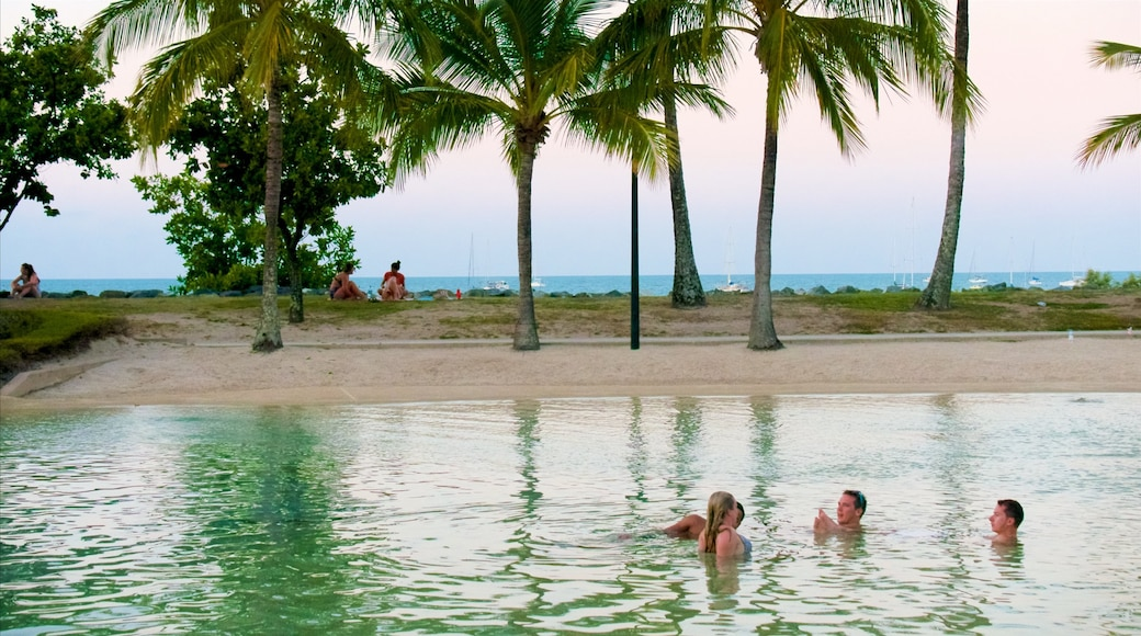 Airlie Beach Lagoon featuring swimming, tropical scenes and general coastal views