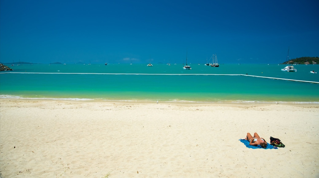 Airlie Beach which includes a sandy beach and tropical scenes as well as an individual female
