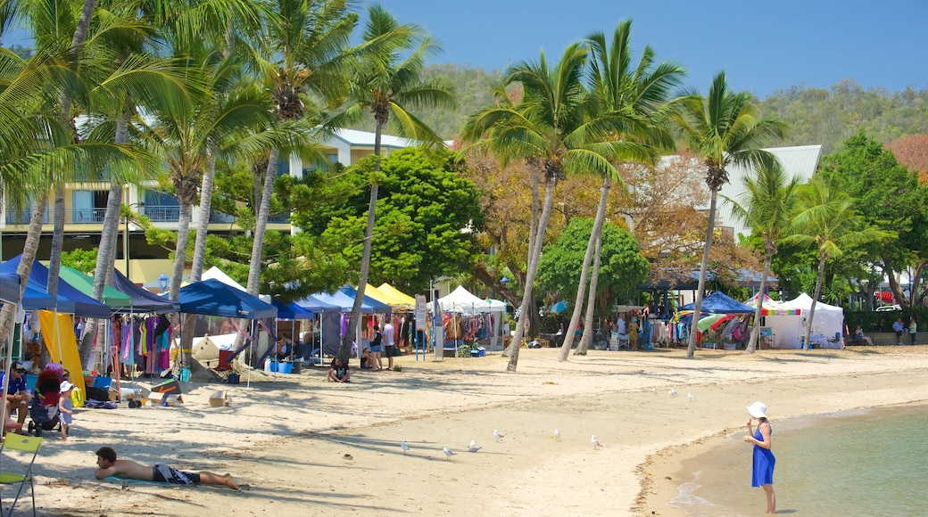 Airlie Beach showing a sandy beach and markets
