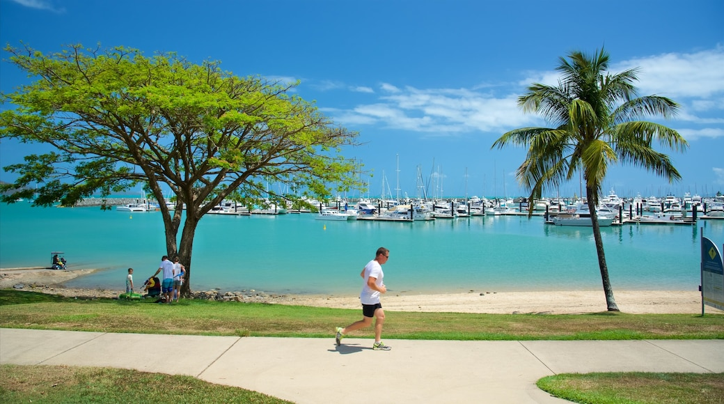 Airlie Beach showing general coastal views and a bay or harbour as well as an individual male