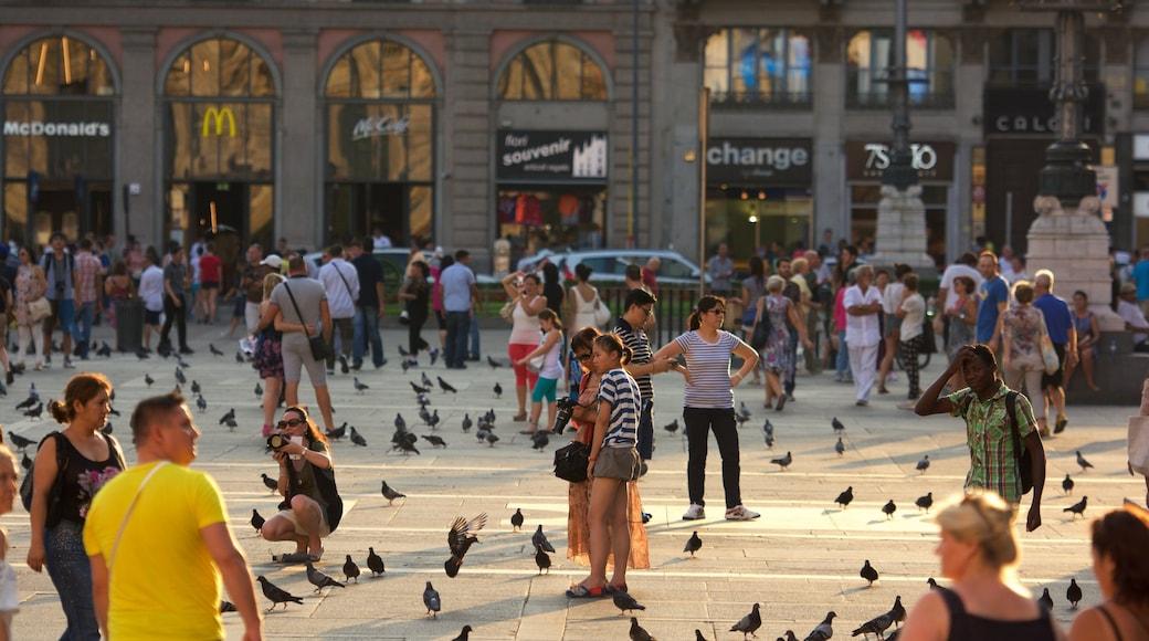 Milano mostrando strade, piazza e città