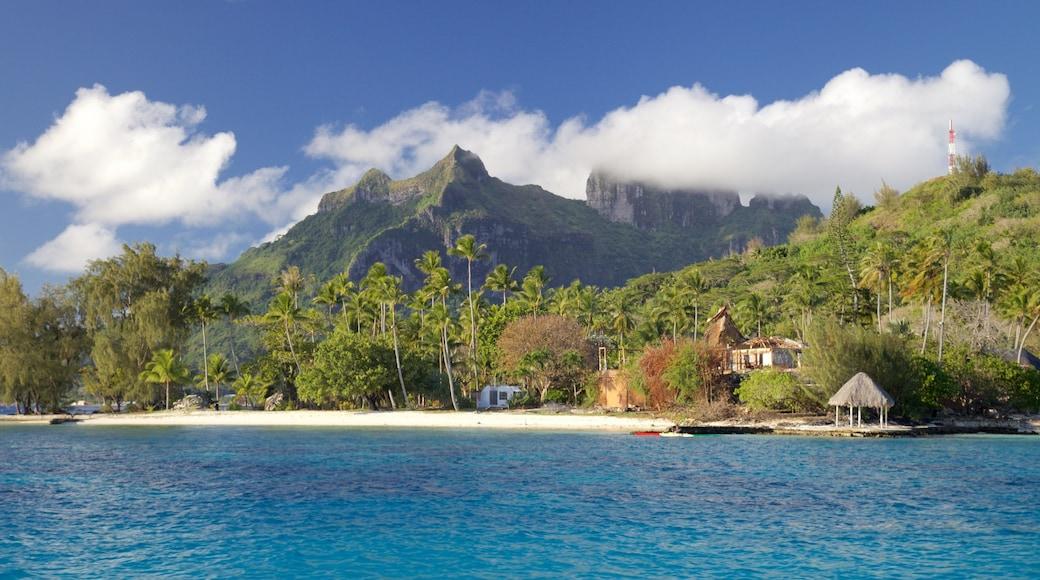 Bora Bora presenterar kustutsikter, landskap och en sandstrand